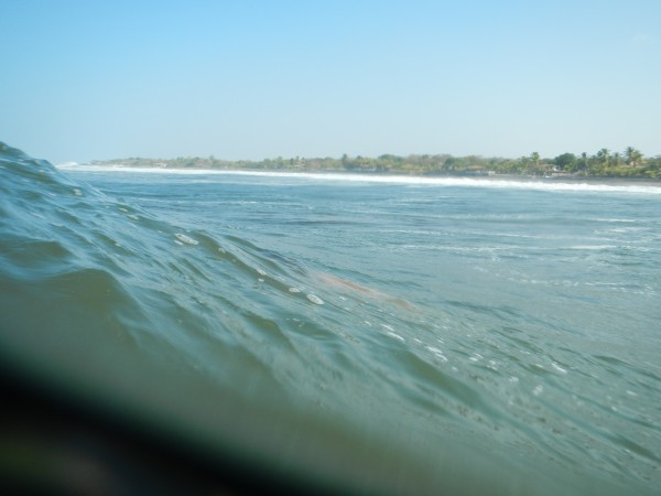 View from the waves!
