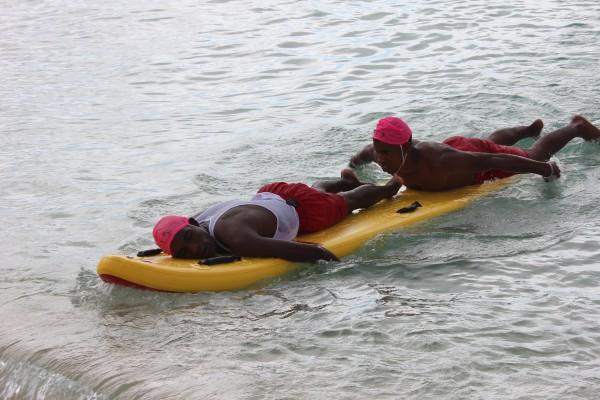 Boardworks Rescue Division